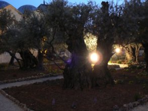 Wake in de Tuin van Getsemane