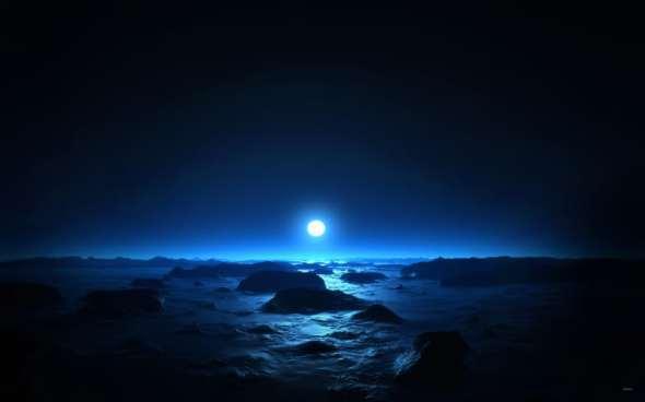 Blue Moon met de Dolfijnen en Walvissen