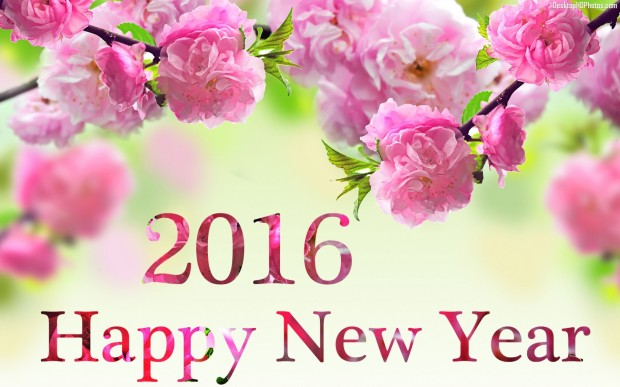 Happy-New-Year-3d-Hd-Wallpaper-Photos-2016-2